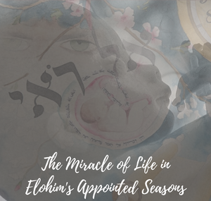 The miracle of life in Elohim's Appointed Seasons