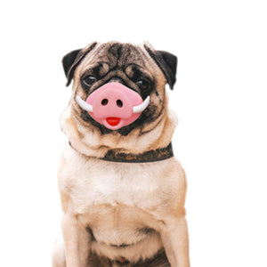 Pet Toys Pig Nose Pet Squeaky Sound Production Toys Halloween Toys, Suitable for Medium and Large Dogs - fommystore
