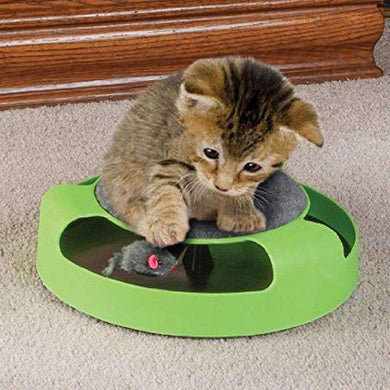 Pet Supplies Cat Plastic Catch the Mouse Interactive Turntable Pet Toys - fommystore