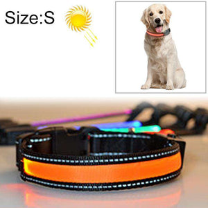 LED Dog Collar - Solar + USB Charging Glowing PET Collar for Night Safety Light Up Caller, Neck Circumference Size: S, 35-40cm - fommystore