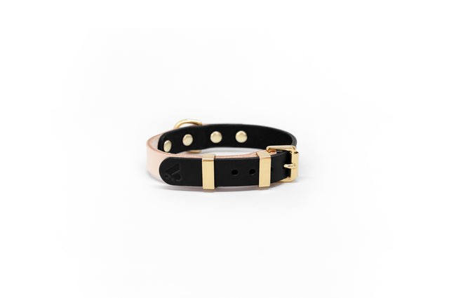 Duotone Leather Collar