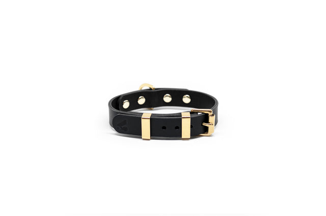 Monotone Leather Collar