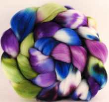 Hand dyed top for spinning -Lupines - (6 oz.) Organic polwarth - Inglenook Fibers