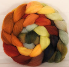 Falkland top for spinning - Gourds - 5.2 oz. - Inglenook Fibers