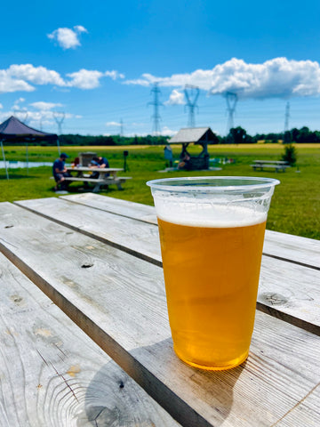 Ontario farm grown beer at Mackinnon Brothers Brewing Co, craft breweries Bath Ontario, what to do in Lennox & Addington County, Napanee and Bath, brewery and venue near Kingston, live concert series at a family farm small town brewery