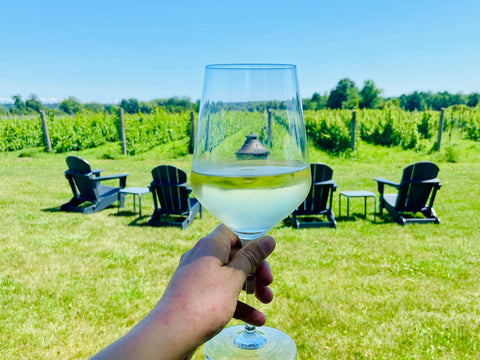 Drinking in Napanee and Bath Ontario near Prince Edward County, Bergeron Estate Winery & Cider, wineries and breweries in Napanee & Bath, Ontario wineries near Ottawa and Kingston, what to do in Napanee, boutique winery & vineyard with homemade pizza, eat and drink in Lennox Addington