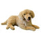 Weighted Dog (Golden Retriever- 4.5kg) - Sensory Corner