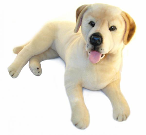 Weighted Dog (Golden Labrador 4kg) - Sensory Corner