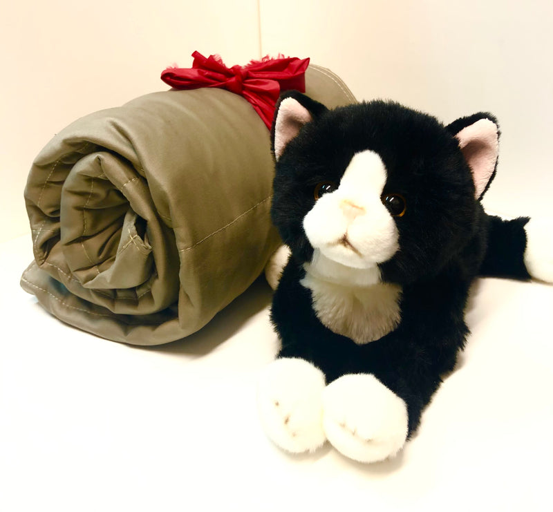 Weighted Cat (1.5kg) and 3kg Blanket Buddy Set - Sensory Corner