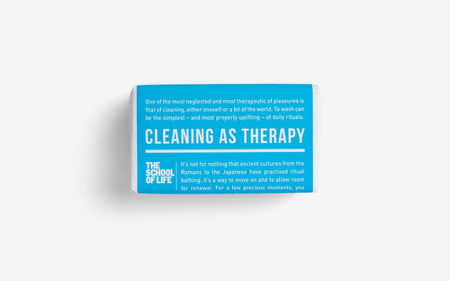 Cleaning as t**rapy - soap (TSOL)