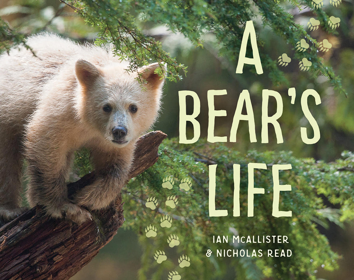 A Bear's Life by Ian McAllister and Nicholas Read