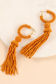 Seed Beads Round Tassels Dangling Earrings
