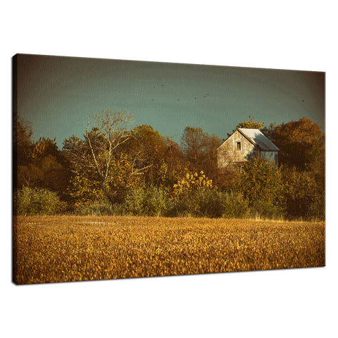 Abandoned Barn In The Trees Colorized Landscape Photo Signed Fine Art Canvas Wall Art Print