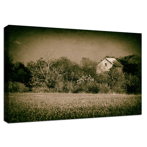Abandoned Barn In The Trees Vintage Rural Landscape Fine Art Canvas Wall Art Prints