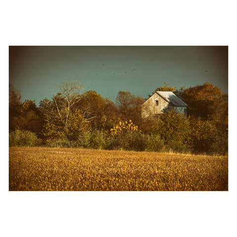 Abandoned Barn In The Trees Colorized Landscape Photo Canvas Wall Art Print