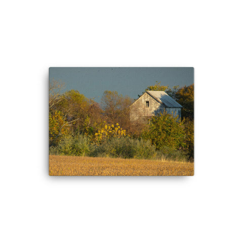 Abandoned Barn In The Trees Rural Landscape Canvas Wall Art Prints