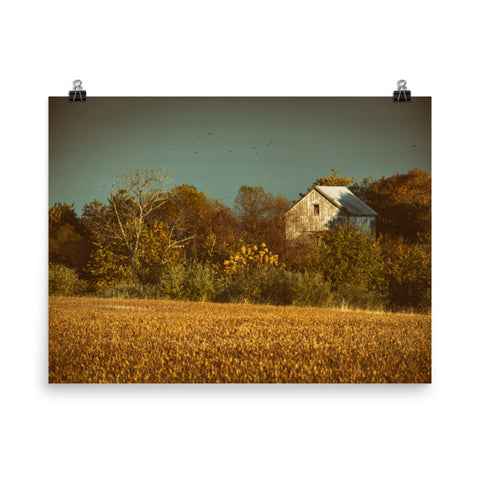 Abandoned Barn In The Trees Colorized Landscape Photo Framed Wall Art Print