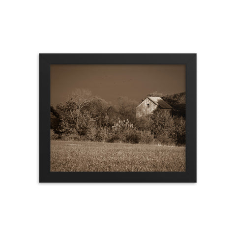 Abandoned Barn In The Trees Sepia Framed Photo Paper Wall Art Prints