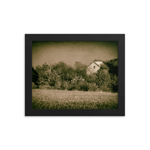 Abandoned Barn In The Trees Vintage Framed Photo Paper Wall Art Prints