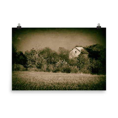 Abandoned Barn In The Trees Vintage Loose Wall Art Prints