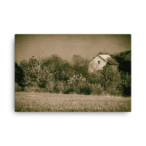 Abandoned Barn In The Trees Vintage Rural Landscape Canvas Wall Art Prints