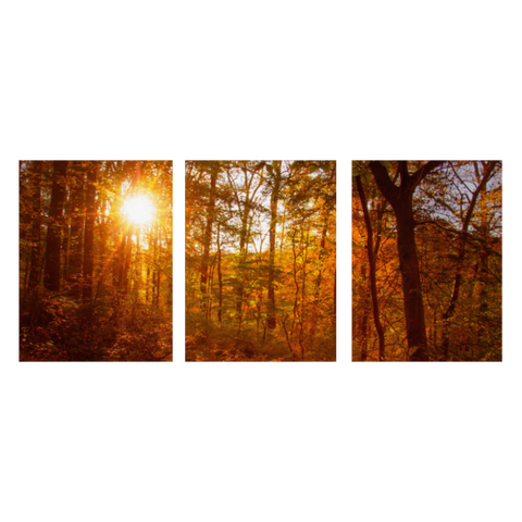 Autumn Sunset 3 Piece Panels Canvas Prints Wall Art - Symmetrical