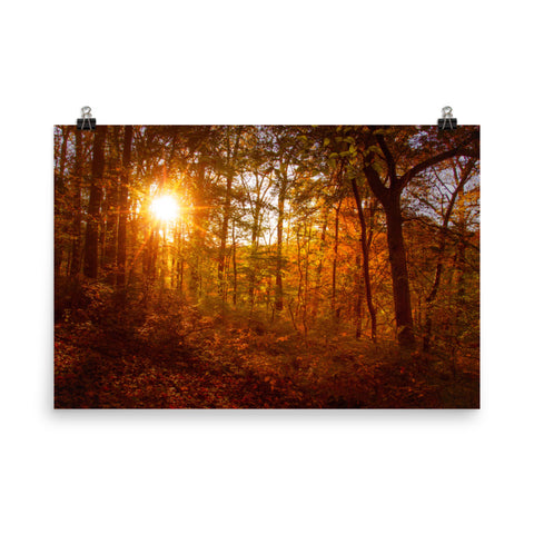 Autumn Sunset Landscape Photo Loose Wall Art Prints