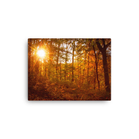 Autumn Sunset Rural Landscape Canvas Wall Art Prints