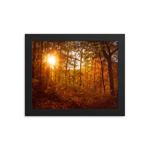 Autumn Sunset in the Trees Rural Landscape Framed Photo Paper Wall Art Prints