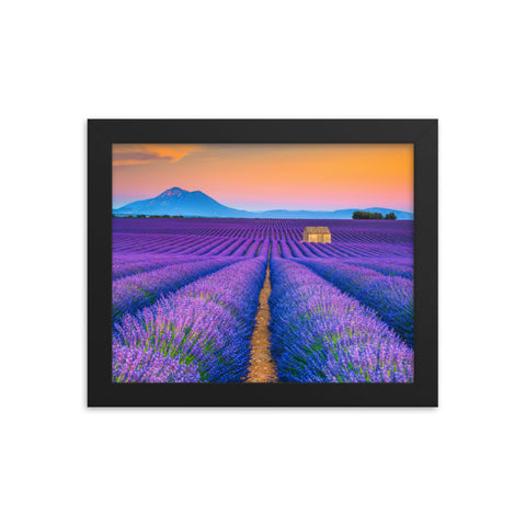 Blooming Lavender Field and Sunset Floral Landscape Framed Photo Paper Wall Art Prints