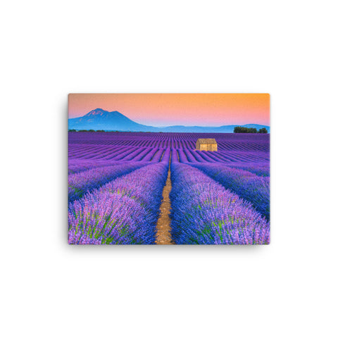 Blooming Lavender Field and Sunset Canvas Wall Art Prints