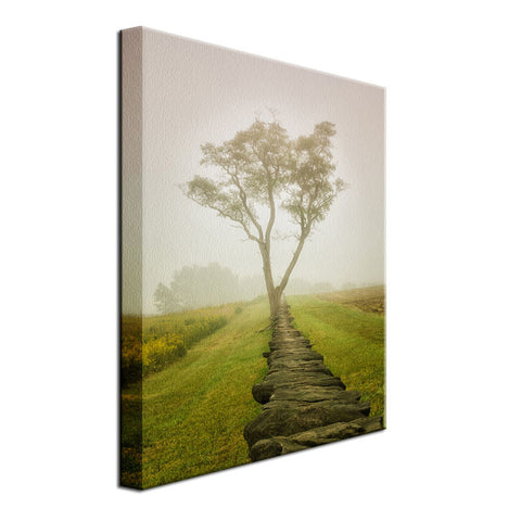 Calming Morning Rural Landscape Photo Fine Art Canvas Wall Art Prints