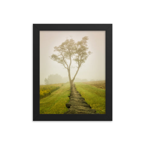 Calming Morning Rural Landscape Framed Photo Paper Wall Art Prints