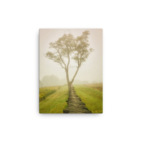Calming Morning Rural Landscape Canvas Wall Art Prints