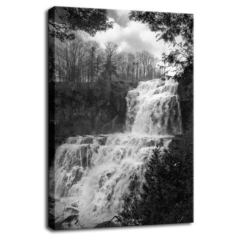 Chittenango Waterfall in Black and White Rural Landscape Fine Art Canvas Wall Art Prints