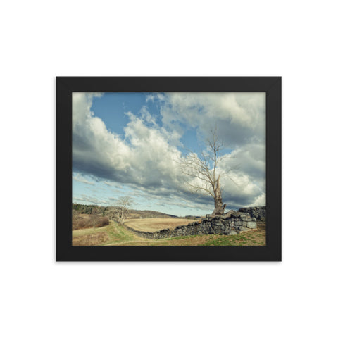 Dead Tree and Stone Wall - Split Toned Framed Rural Landscape Photo Paper Wall Art Prints