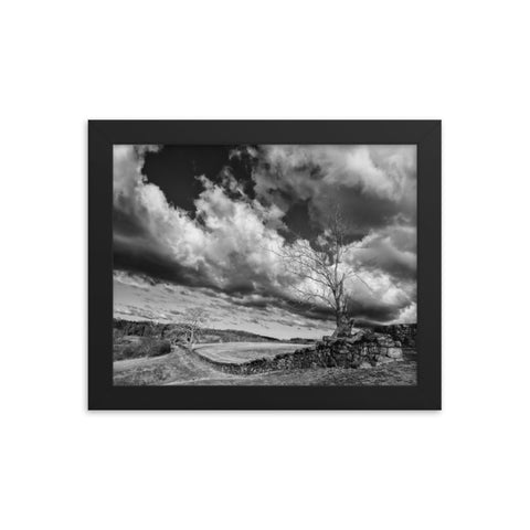 Dead Tree and Stone Wall in Black and White Framed Rural Landscape Photo Paper Wall Art Prints