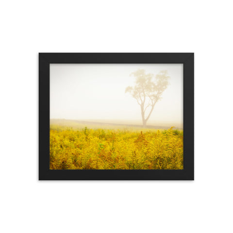Dreams of Goldenrod and Fog Rural Landscape Framed Photo Paper Wall Art Prints