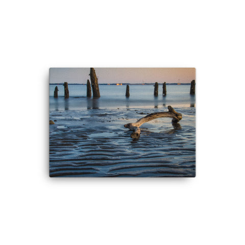 Driftwood and Sandbars Coastal Landscape Canvas Wall Art Prints