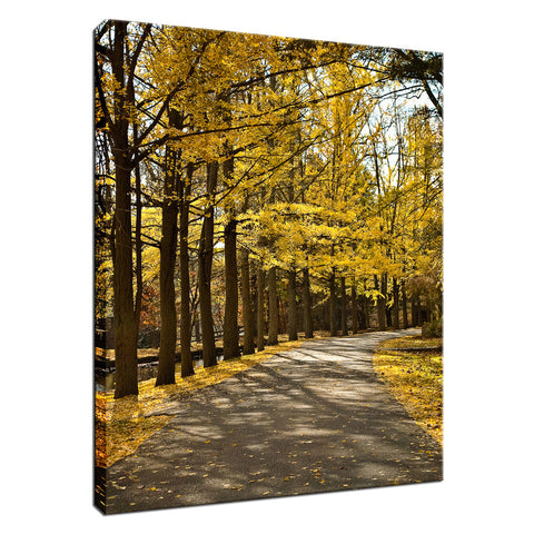 Fall Path Nature Landscape Photo Fine Art Canvas Wall Art Prints