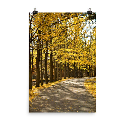 Fall Path Rural Autumn Landscape Photo Loose Wall Art Print
