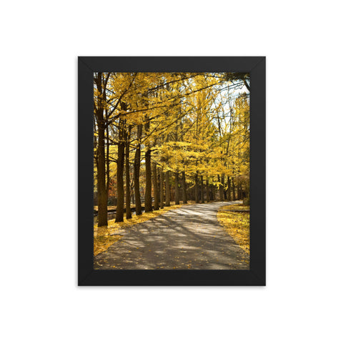Fall Path Nature Rural Landscape Framed Photo Paper Wall Art Prints