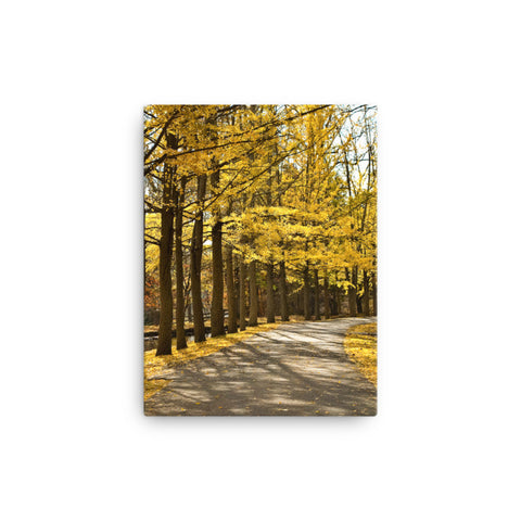 Fall Path Rural Autumn Landscape Canvas Wall Art Prints