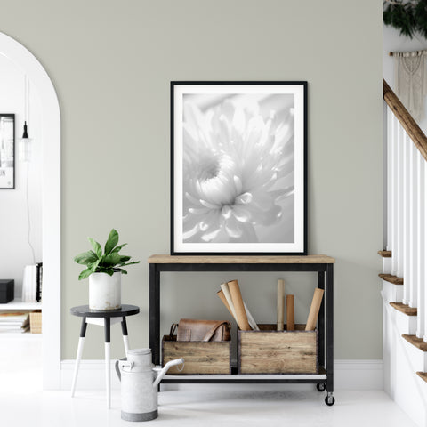 Floral Nature Photograph Infrared Flower - Fine Art Canvas Prints- Home Decor Unframed Wall Art Prints for your living room, bedrooms, dining rooms family rooms and more.
