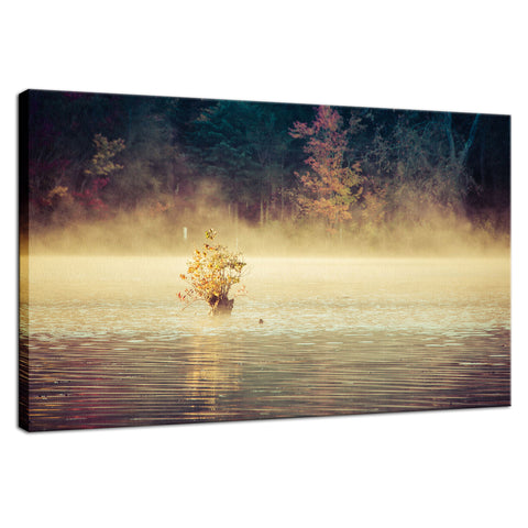 Golden Mist on Waples Pond Landscape Photo Fine Art Canvas Wall Art Prints