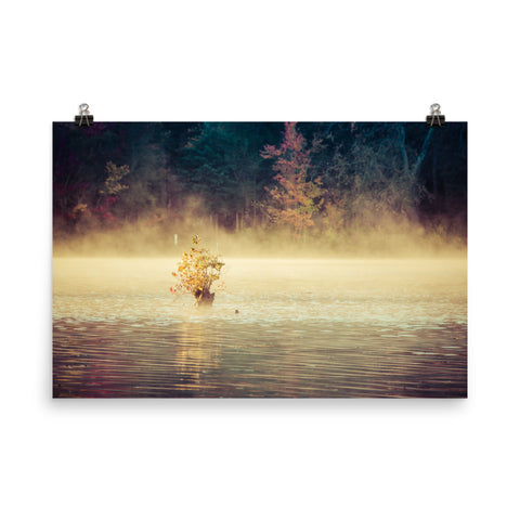 Golden Mist on Waples Pond Landscape Photo Loose Wall Art Prints