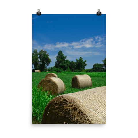 Hay Whatcha Doin' in the Field Landscape Photo Loose Wall Art Print