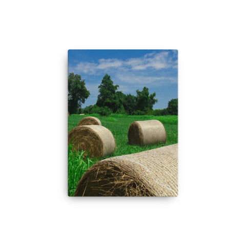 Hay Whatcha Doin' in the Field Rural Landscape Canvas Wall Art Prints