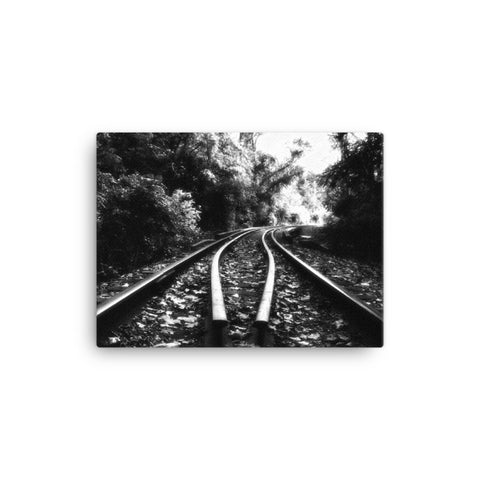 Lead Me Into The Light Black and White Rural Landscape Canvas Wall Art Prints