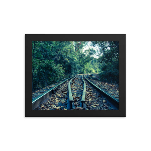 Lead Me into the Light - Colorized Framed Photo Paper Wall Art Prints